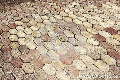 Terracotta paving tile
