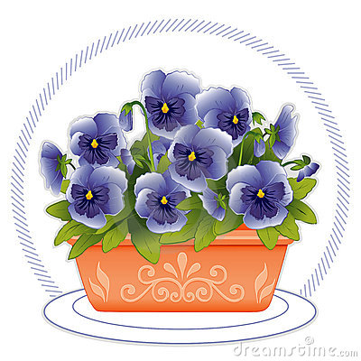 Terracotta Planter with Sky Blue Pansies