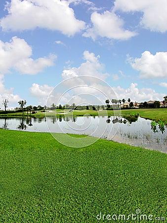 Terrain de golf avec des vues de lac