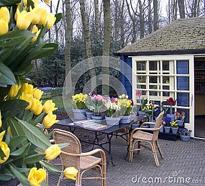 terrasse de fleur photo stock image 114010. Black Bedroom Furniture Sets. Home Design Ideas
