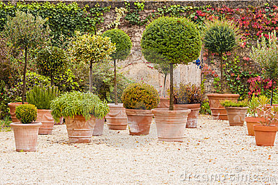 Mediterranean patio with flowerpots