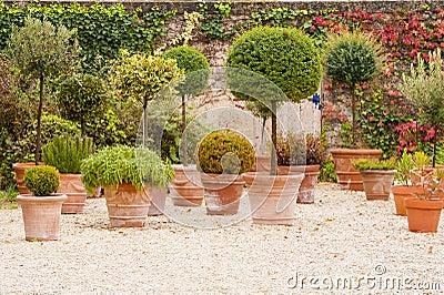 Mediterranean patio with flowerpots