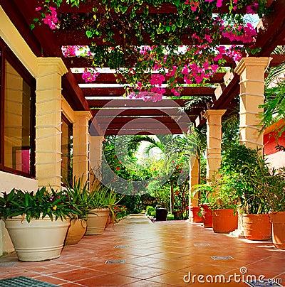 Terraza con las flores