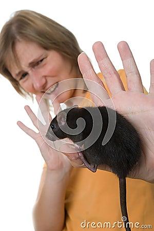 Terrible rat