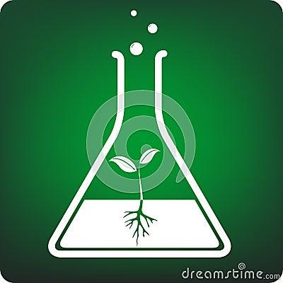 Test tube plant