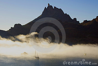 Tetacawi (de Mees van de Geit) in mist