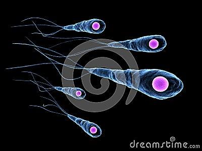 Tetanus Bacteria: http://www.dreamstime.com/tetanus-bacteria-thumb11898406.jpg