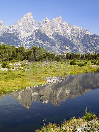 Tetons and Duck Reflected at Schwabachers Landing