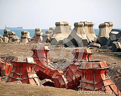 Tetrapod along the Shore