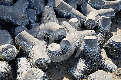 Tetrapods on the beach