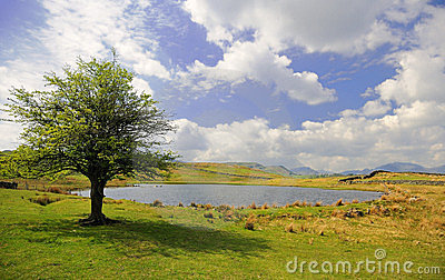Tewet Tarn, Lake District, Cumbria