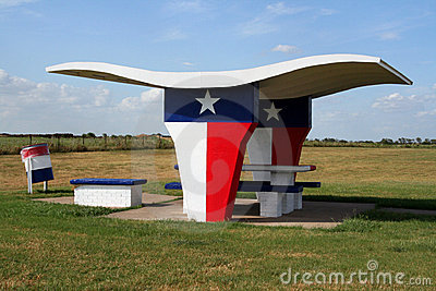 Texas Picnic Table