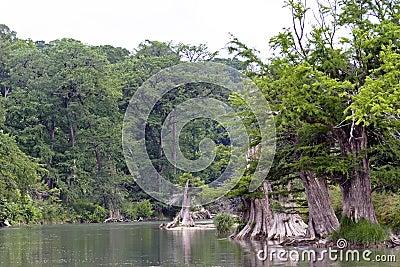 Texas Scenic River