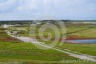 Texel island landscape Holland