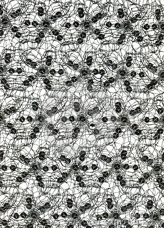 Free Textile - Laces With Spangles Stock Photography - 14184142