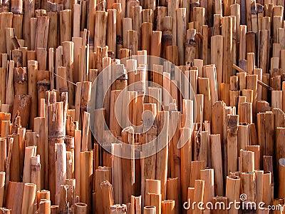 Textura de bambú