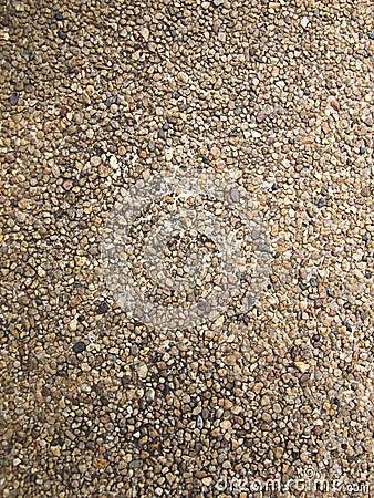 Imagen de archivo textura de la grava lavada como fondo
