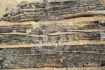 Textura de madeira envelhecida da praia com a areia resistida