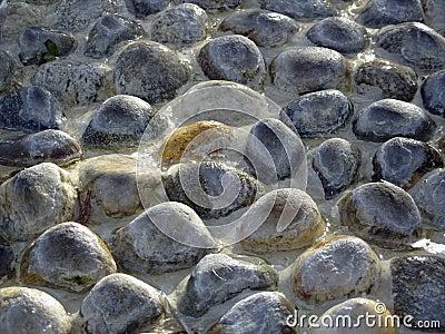 Textura molhada das pedras
