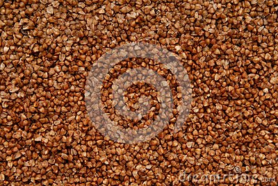 Texture background is out of boiled buckwheat.