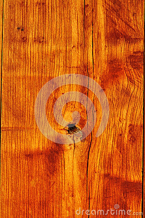 Texture Background of real wood