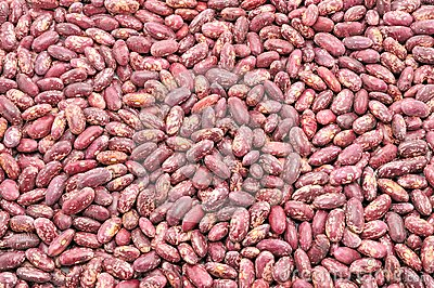 Texture of the beans