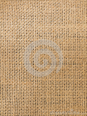 Texture of cotton fabric