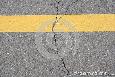 Texture of crack line on black road