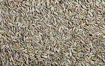 Texture Of Cumin Stock Images - Image: 22802014