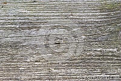 Texture en bois de planche image stock image 10902501 for Planche bois exterieur