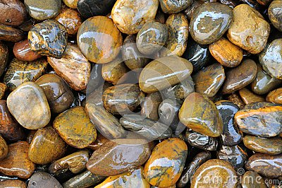 Texture en pierre humide 2