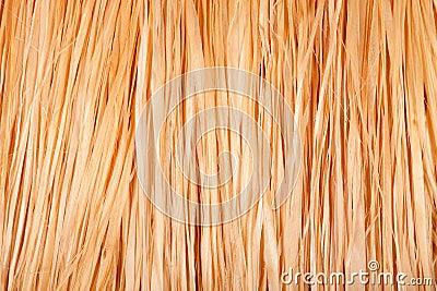 Texture of grass skirt