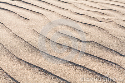Texture and sand background