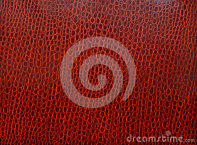 Texture of skin of a crocodile of claret color