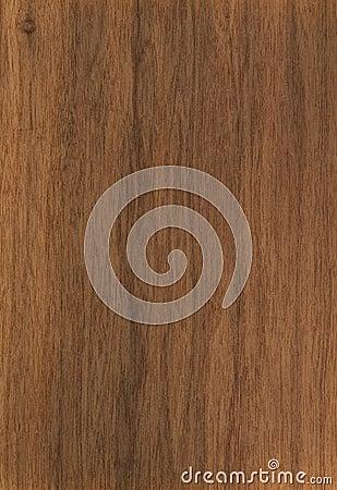 Free Texture Walnut Stock Image - 32763591