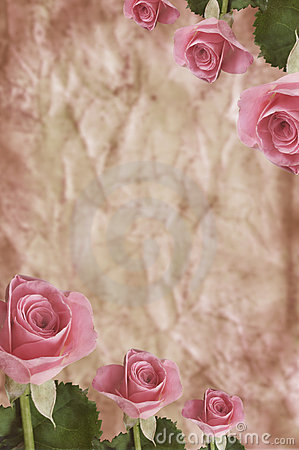 Free Texture With Roses Stock Images - 15407544