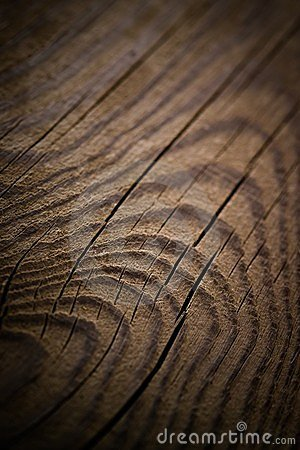 Texture wood - background vintage vertical