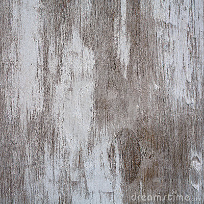 Texture of wooden history