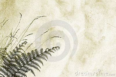 Textured background with fernery - space for text