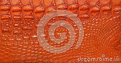 Textured crocodile leather