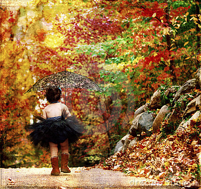 Free Textured Fall Royalty Free Stock Photos - 4472078