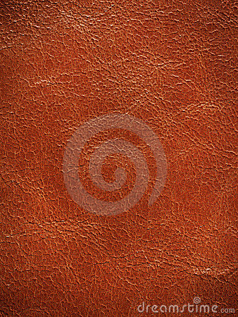 Textured leather background