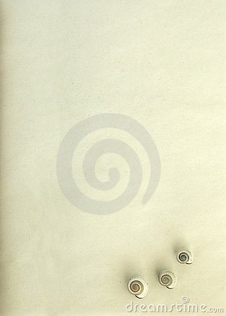 Free Textured Old Paper With Shells Stock Photography - 16967432