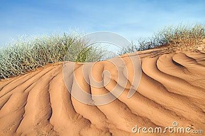 Textured pink sand dune