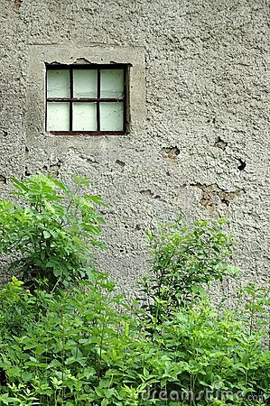 Textured wall of old building