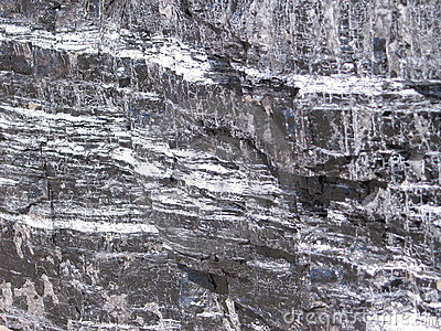 Textures of the coal