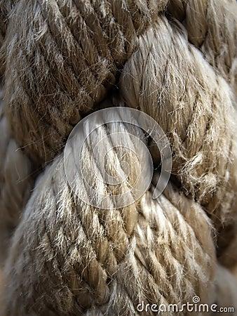 Textures  cord