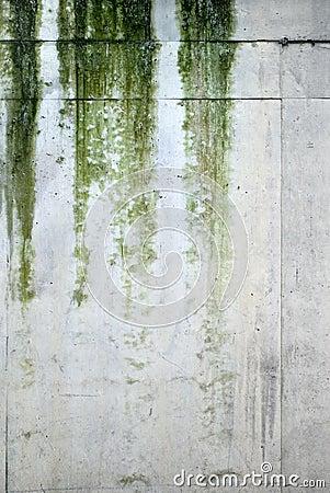 textures rain