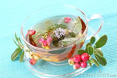 Thé de vitalité