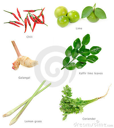 Free Thai Food Ingredients Stock Image - 16412471